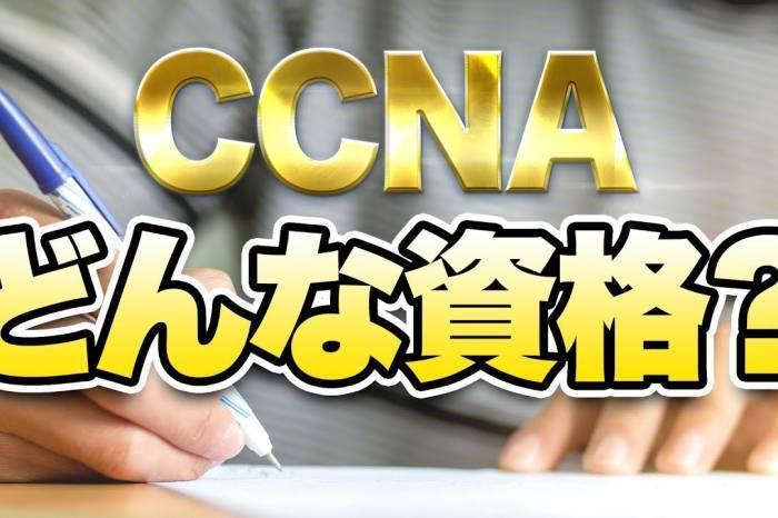 世界に通用する資格を取得しよう!CCNAってどんな資格?